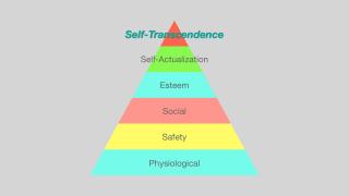 Hierarchy 2